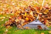 Fall Landscaping Tips For Property Managers