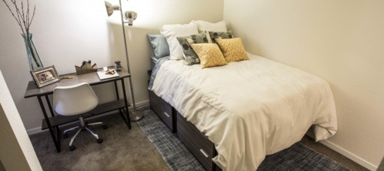 $800/mo. Furnished private room/bathroom in upscale 4 BD/4BA apt.