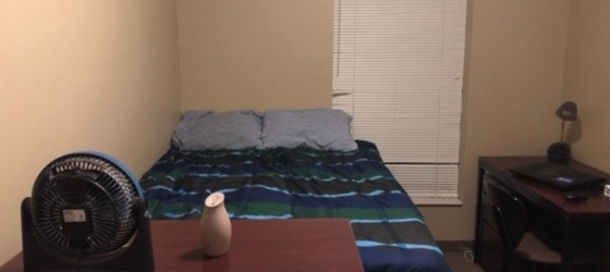 1 bedroom/1 bath Courtyard Student Apartments sublet May-end of August 2019
