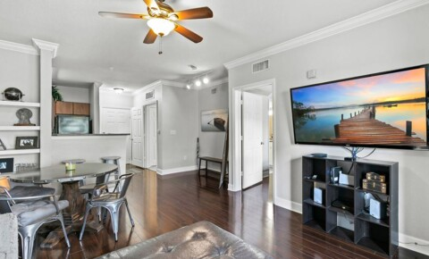 Apartments Near UCF 300 E South St for University of Central Florida Students in Orlando, FL