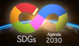 SDG: Moving Towards Sustainable Work