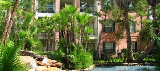 1 bedroom Clear Lake
