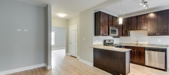 New U of C Campus!  Awesome Hyde Park Rehab 3 Bedroom w/Heat & Wifi Included!