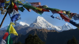 Massachusetts Student Travel Annapurna Sanctuary for University of Massachusetts-Amherst Students in Amherst, MA